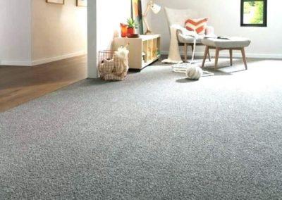 Grey Trends Carpet